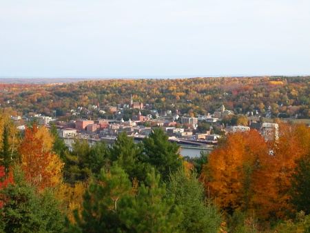 Downtown Houghton, trees in color